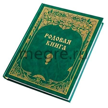 "Kronika ""Rodová kniha"" (rusky)"